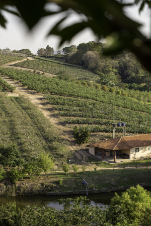 Propriedade São Vicente