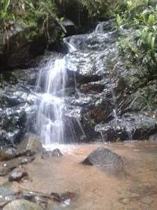 Japiapé e a natureza