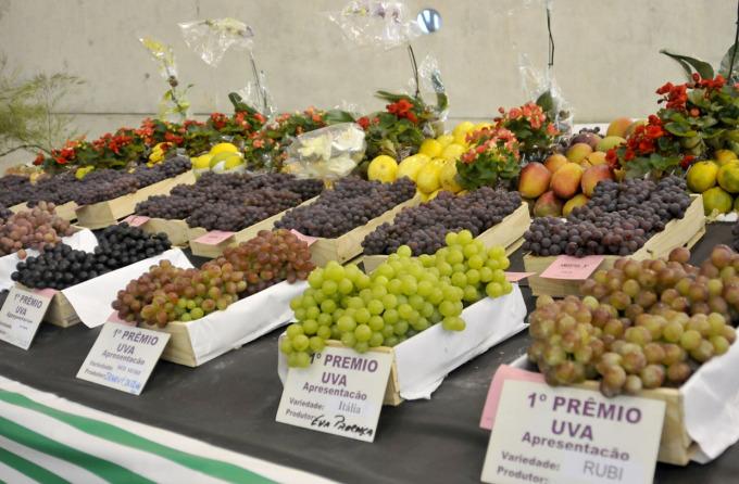 Exposição de frutas volta com força na edição 2015